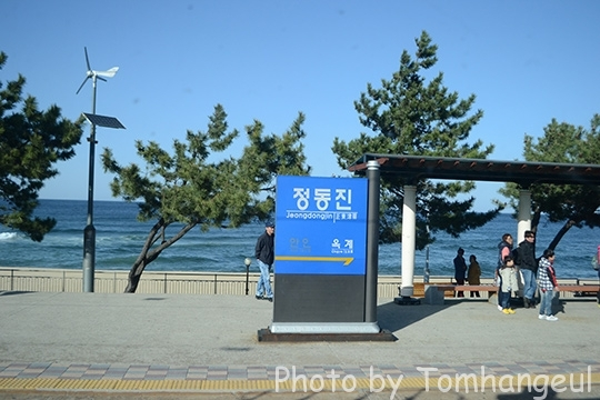 jeongdongjin213